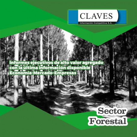 Informe de coyuntura sector Forestal