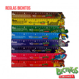 Reglas Bichitos de Misiones