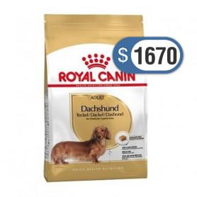 Bolsa de alimento Royal Canin Dachshund 3 kilos
