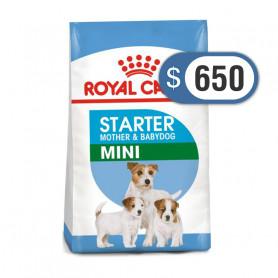 Bolsa de alimento Royal Canin Mini Starter 1 kilo
