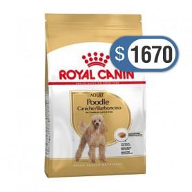 Bolsa de alimento Royal Canin Poodle Adulto 3 kilos